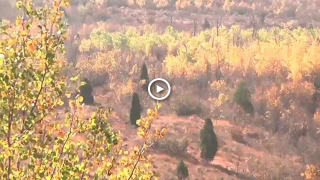 Video of Idaho Falls in Autumn